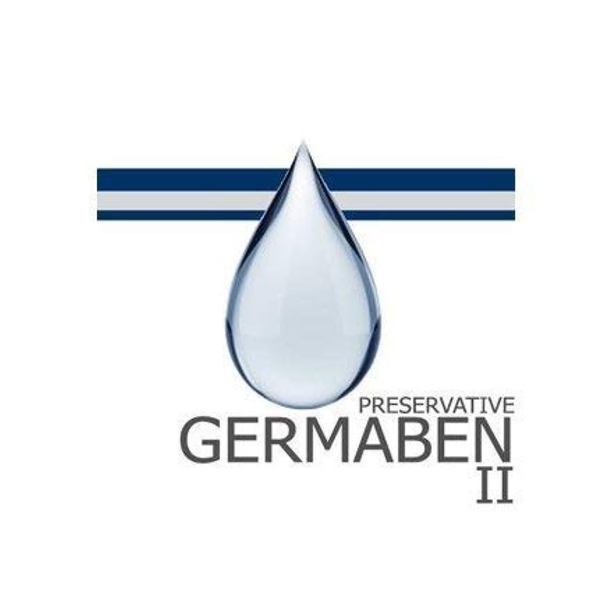 悪用トピック調和germaben II