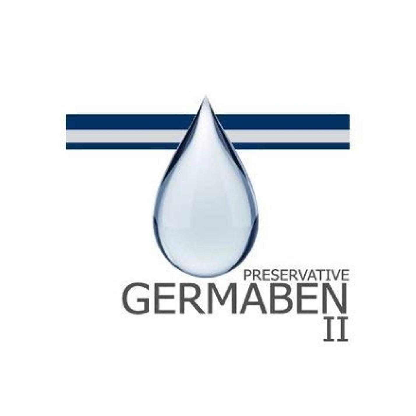 耐久報復辞任するgermaben II
