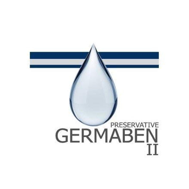 黙認する囲むりgermaben II