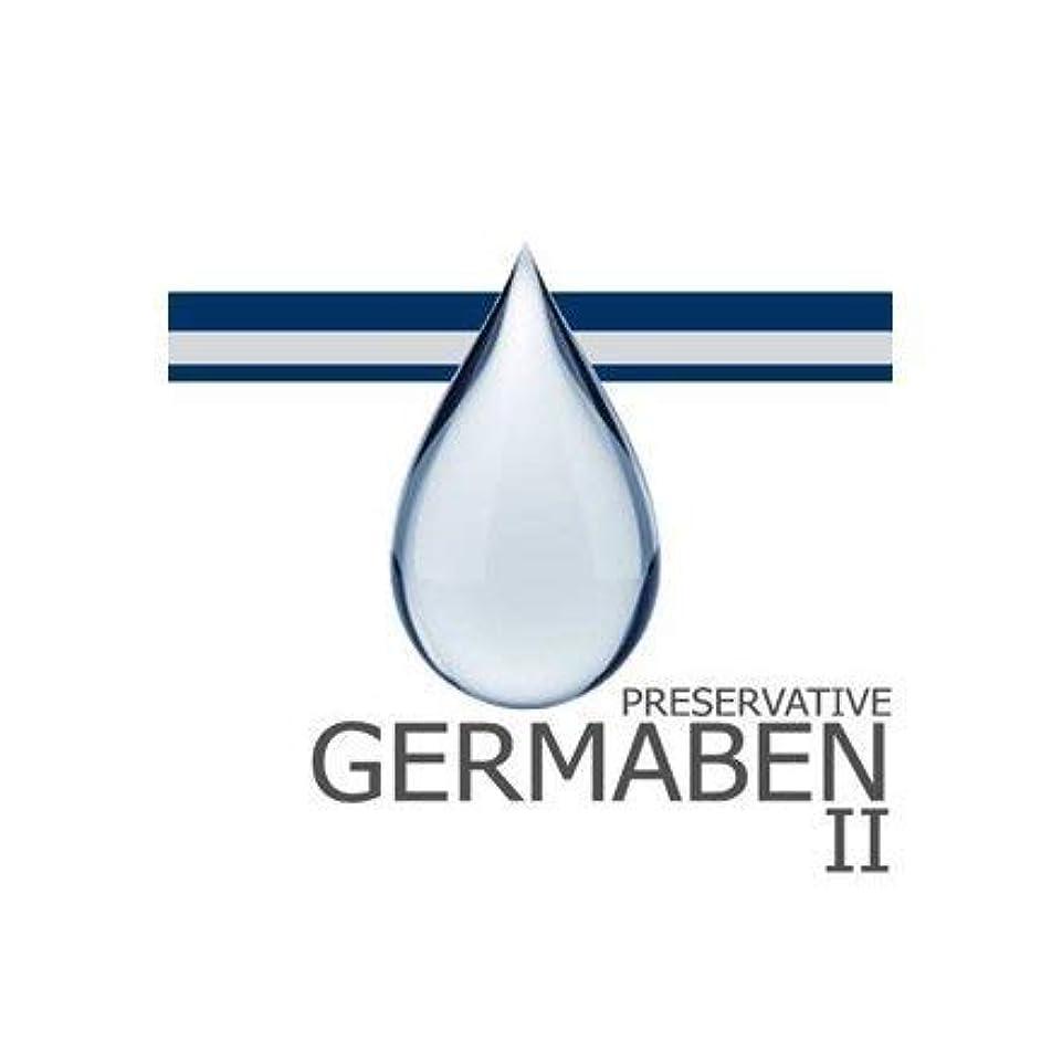 外向きバイアス省germaben II