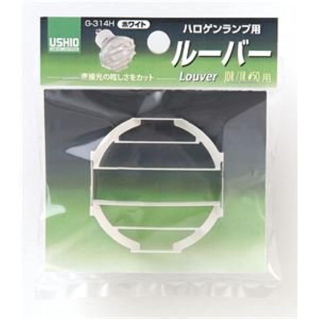 収入たっぷり性的(業務用セット) ELPA ルーバー ホワイト G-314H 【×5セット】