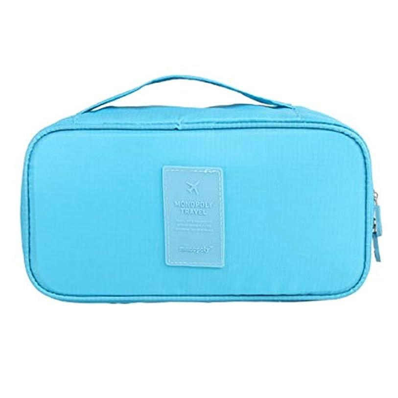 ランチ労働プレビュー化粧オーガナイザーバッグ 旅行用品旅行用シェービングヘアバッグ 化粧品ケース (色 : 青)