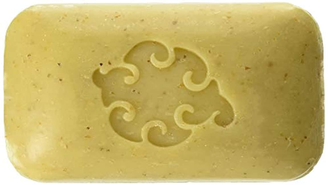 確かな有望フェザーBaudelaire Hand Soap Loofah Sea - 5 Oz, 8 Pack by Baudelaire Soaps/Provence Sante