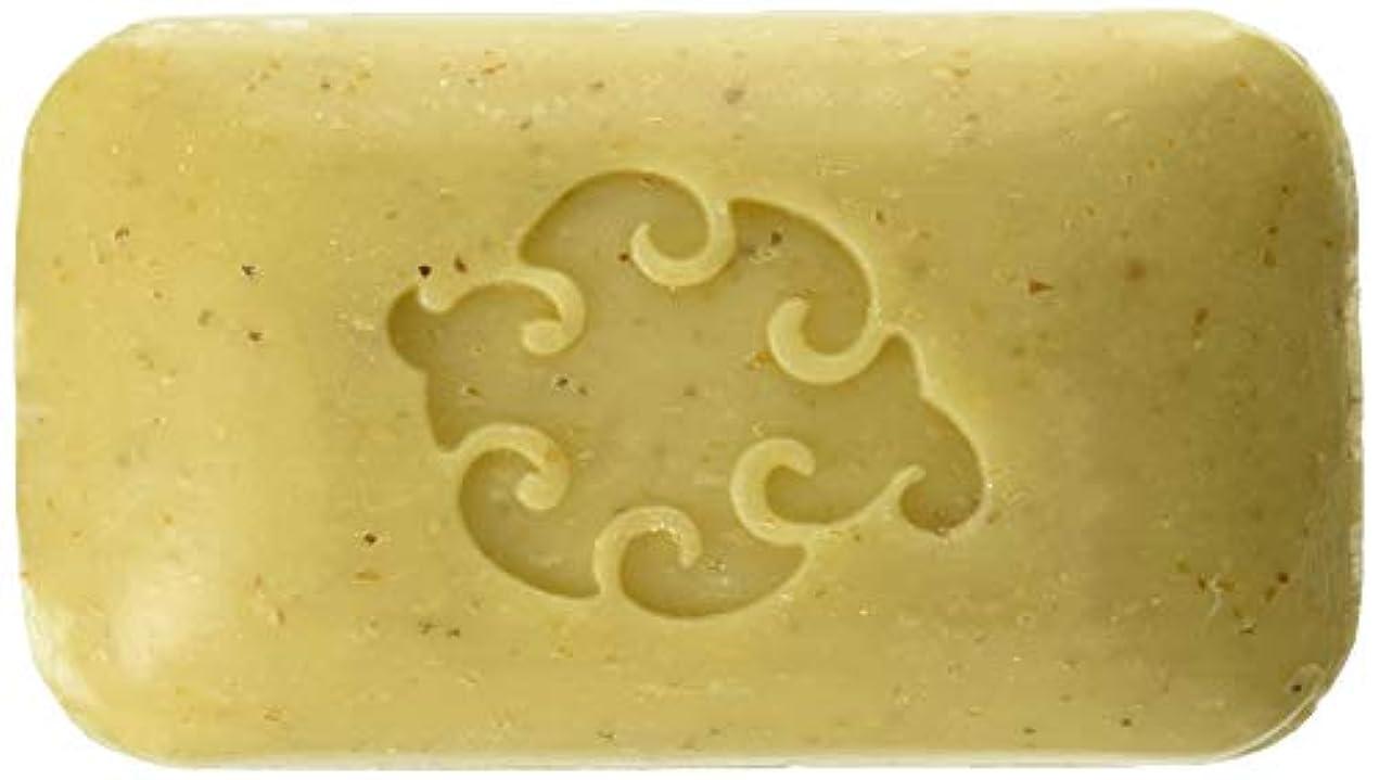 否認する再集計エイリアンBaudelaire Hand Soap Loofah Sea - 5 Oz, 8 Pack by Baudelaire Soaps/Provence Sante