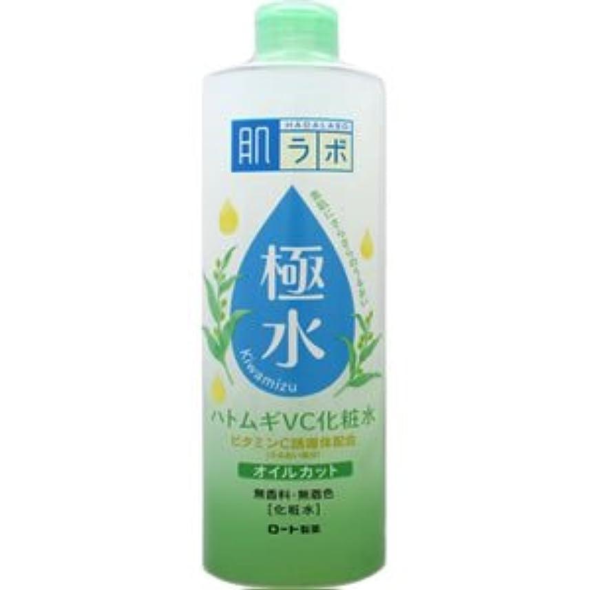 ゴミ箱ひも主張する(ロート製薬)肌研 極水ハトムギVC化粧水 400ml