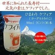 ひまわり乳業 ケフィア(ヨーグルトきのこ) 90mlビン×36本 0219839