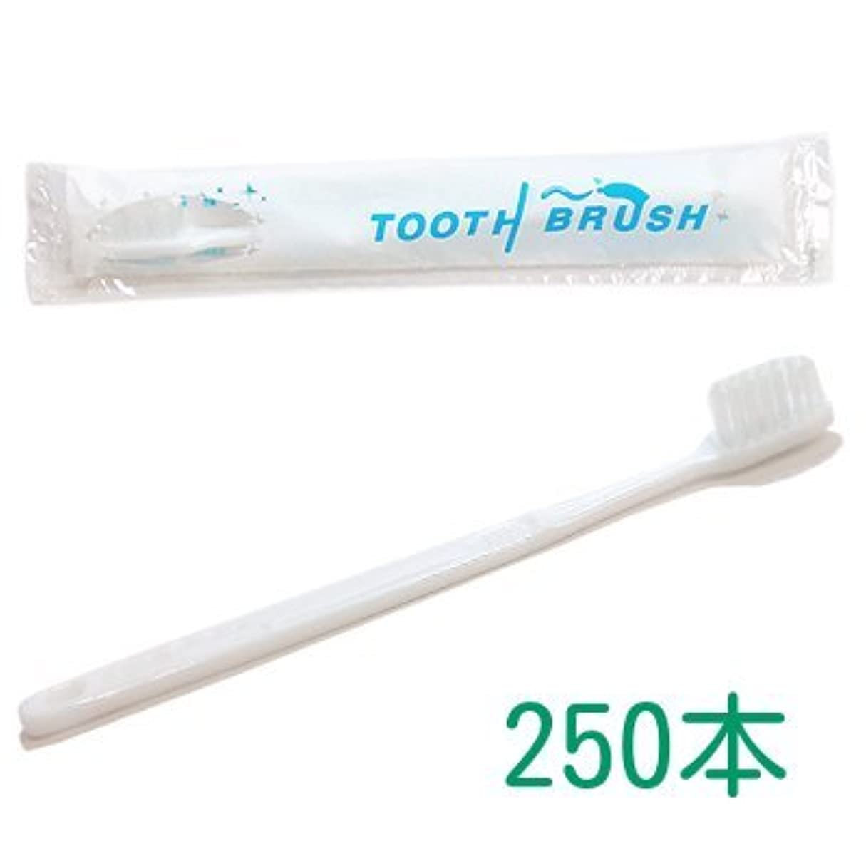薬理学貼り直す僕の業務用 粉付き歯ブラシ インスタント歯ブラシ 選べるセット 250本