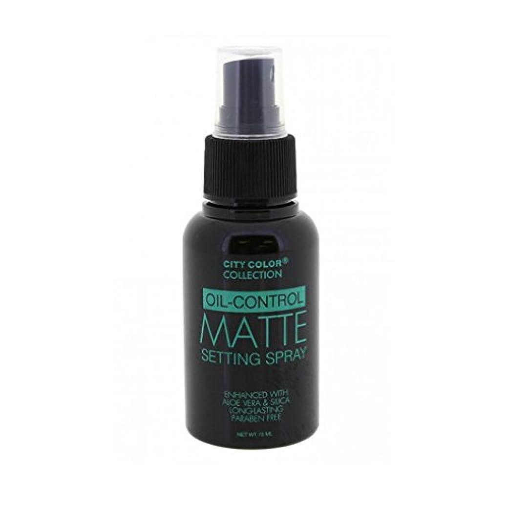 発生する安息評価する(6 Pack) CITY COLOR Oil-Control Matte Setting Spray (並行輸入品)