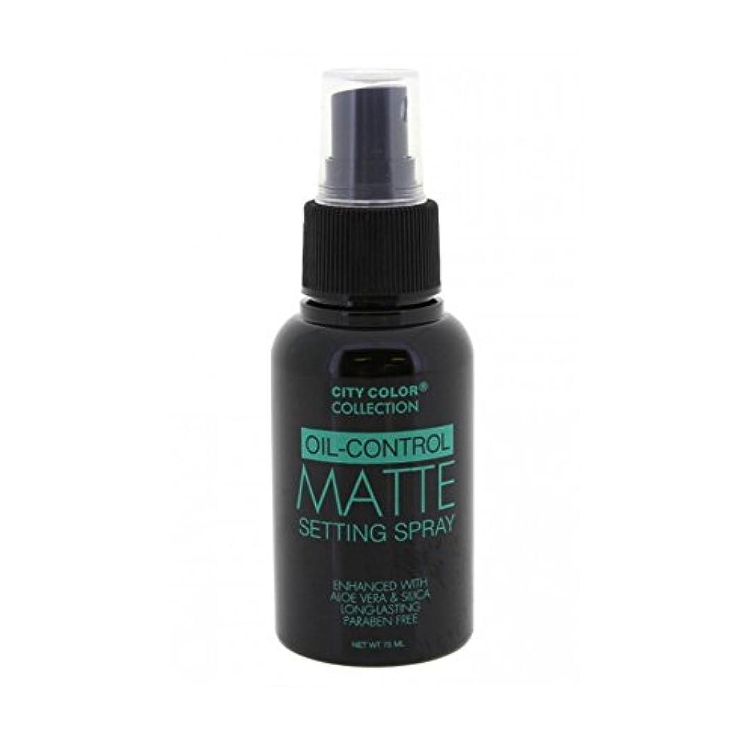 ハミングバード大事にする押し下げる(6 Pack) CITY COLOR Oil-Control Matte Setting Spray (並行輸入品)