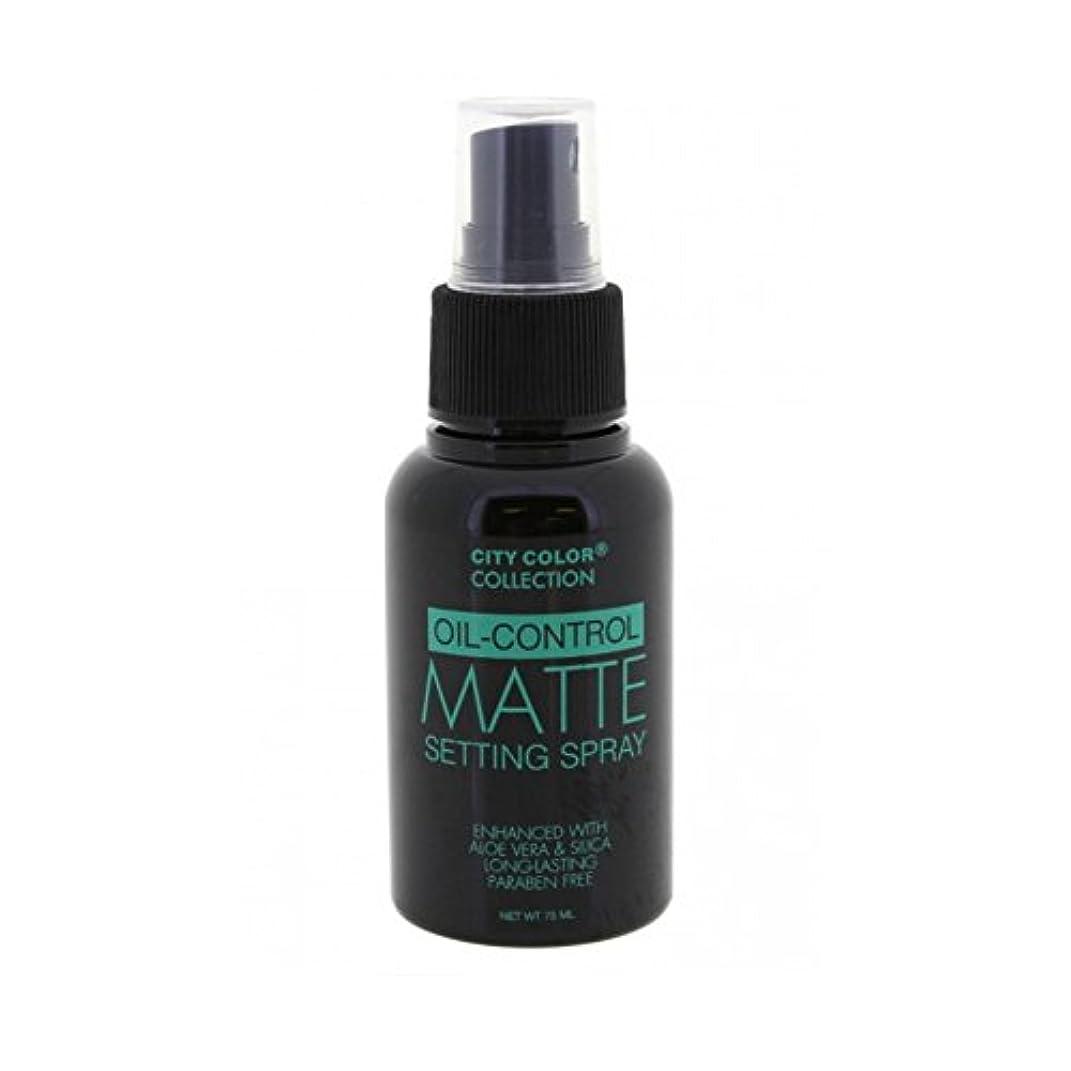 天の計器荒涼とした(6 Pack) CITY COLOR Oil-Control Matte Setting Spray (並行輸入品)