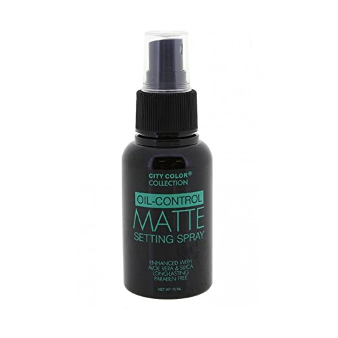 からに変化するメルボルンデザート(6 Pack) CITY COLOR Oil-Control Matte Setting Spray (並行輸入品)