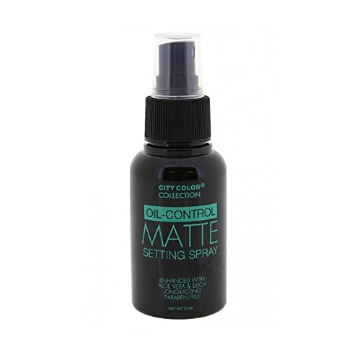 ワークショップ二度健康的(6 Pack) CITY COLOR Oil-Control Matte Setting Spray (並行輸入品)