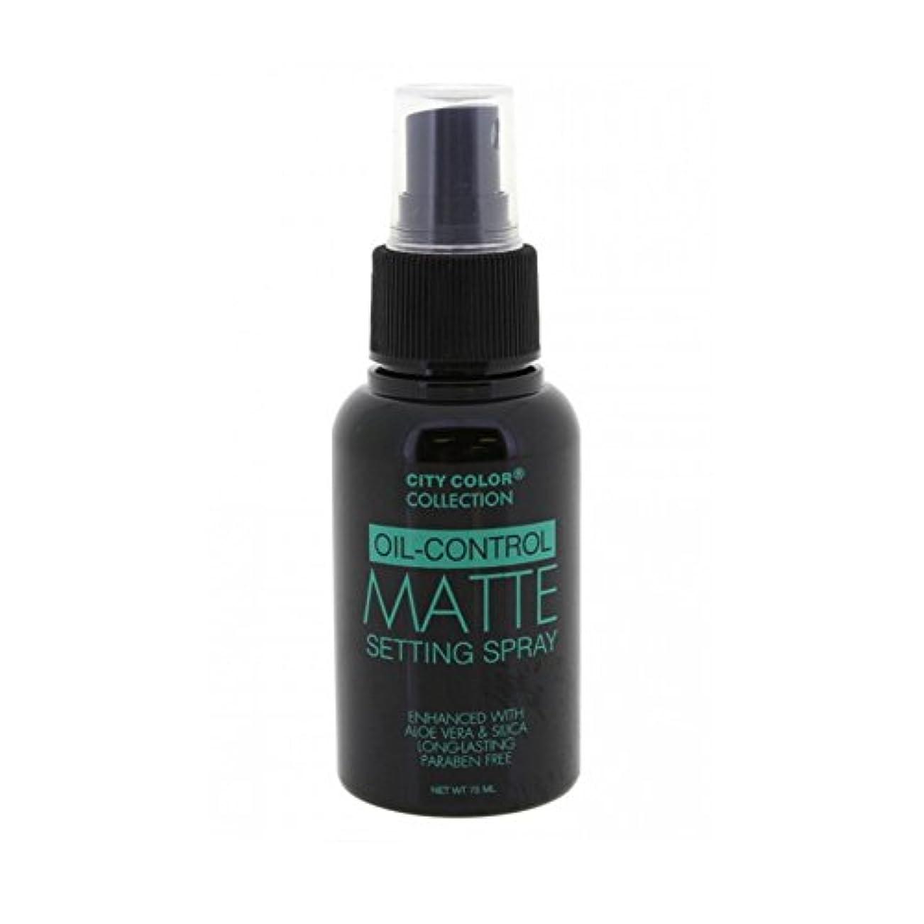 調整するペスト誘う(6 Pack) CITY COLOR Oil-Control Matte Setting Spray (並行輸入品)