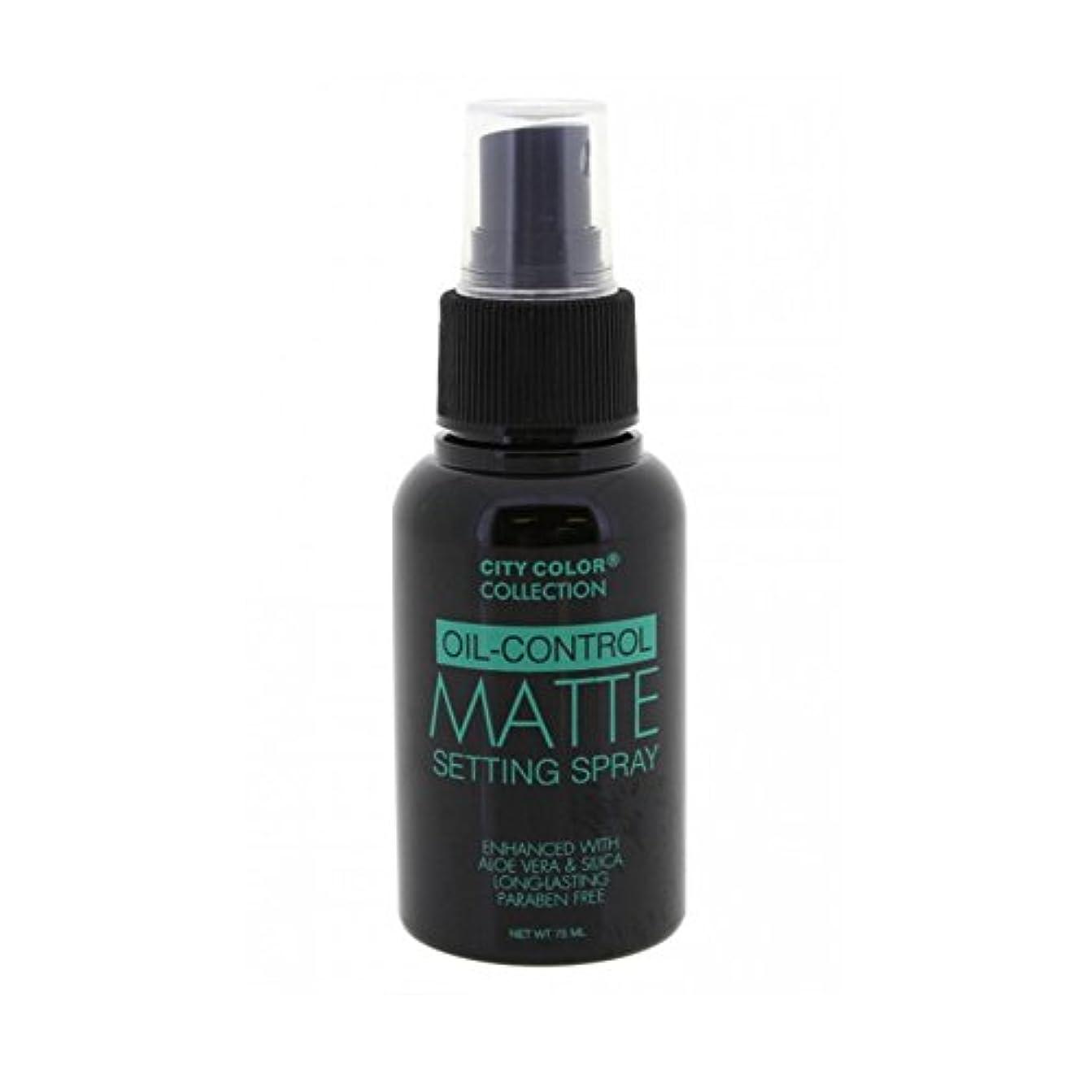 病者販売計画繰り返したCITY COLOR Oil Control Matte Setting Spray (並行輸入品)