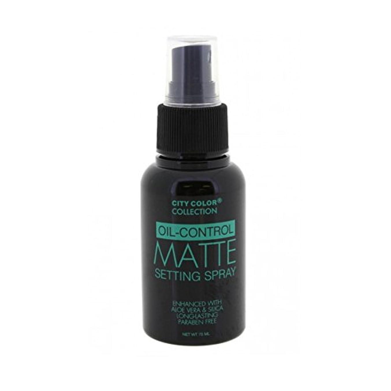レクリエーション夜間誘惑(6 Pack) CITY COLOR Oil-Control Matte Setting Spray (並行輸入品)