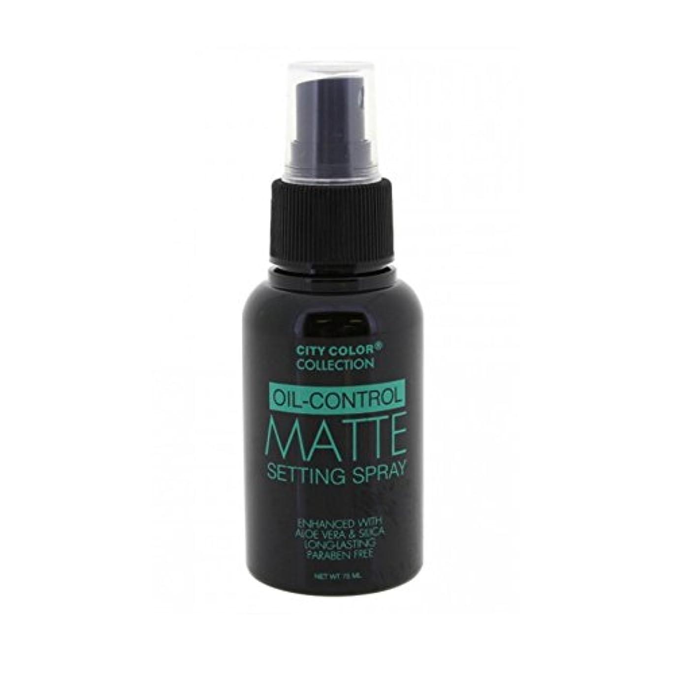レルム悪夢ファーザーファージュ(6 Pack) CITY COLOR Oil-Control Matte Setting Spray (並行輸入品)