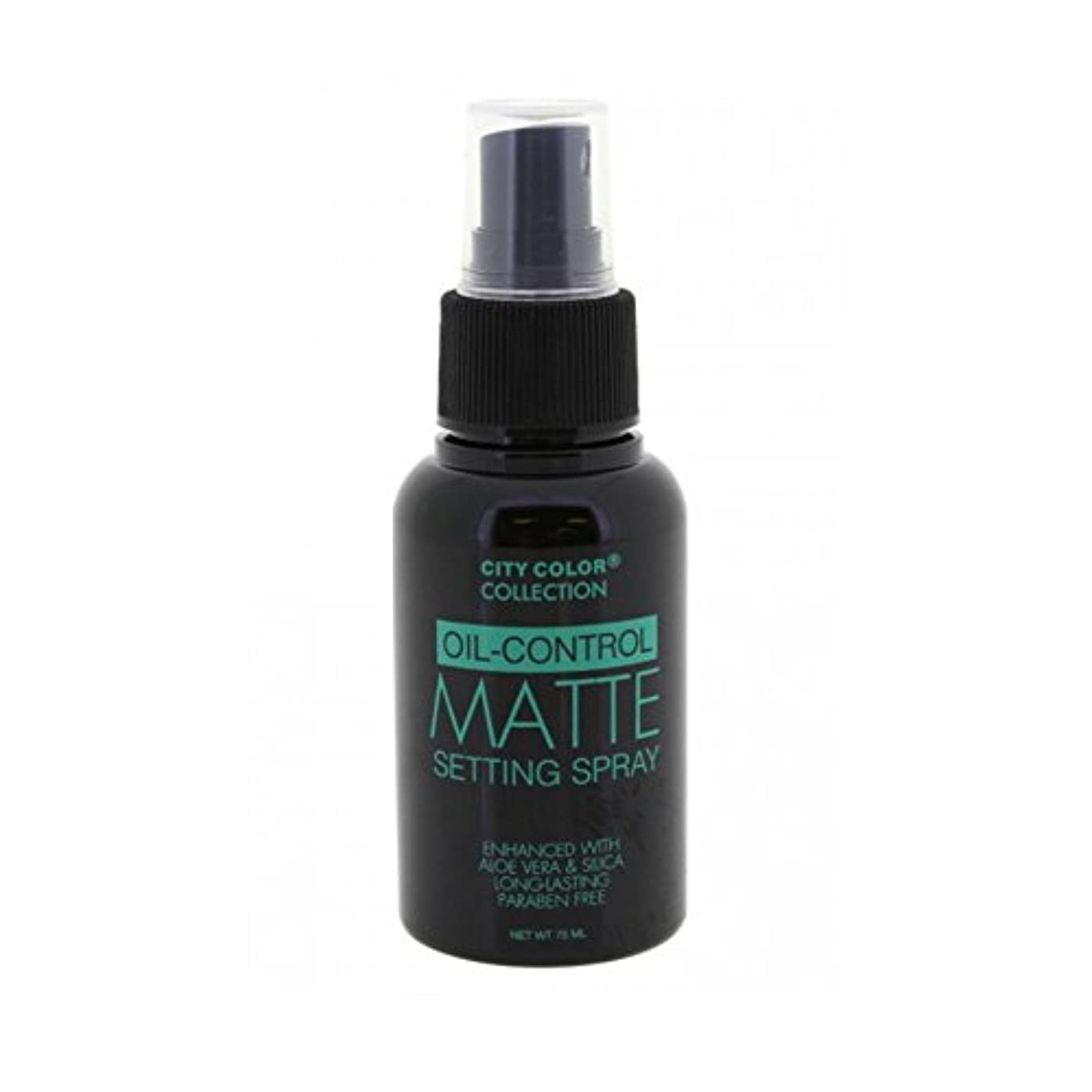 リハーサル新年余分な(6 Pack) CITY COLOR Oil-Control Matte Setting Spray (並行輸入品)