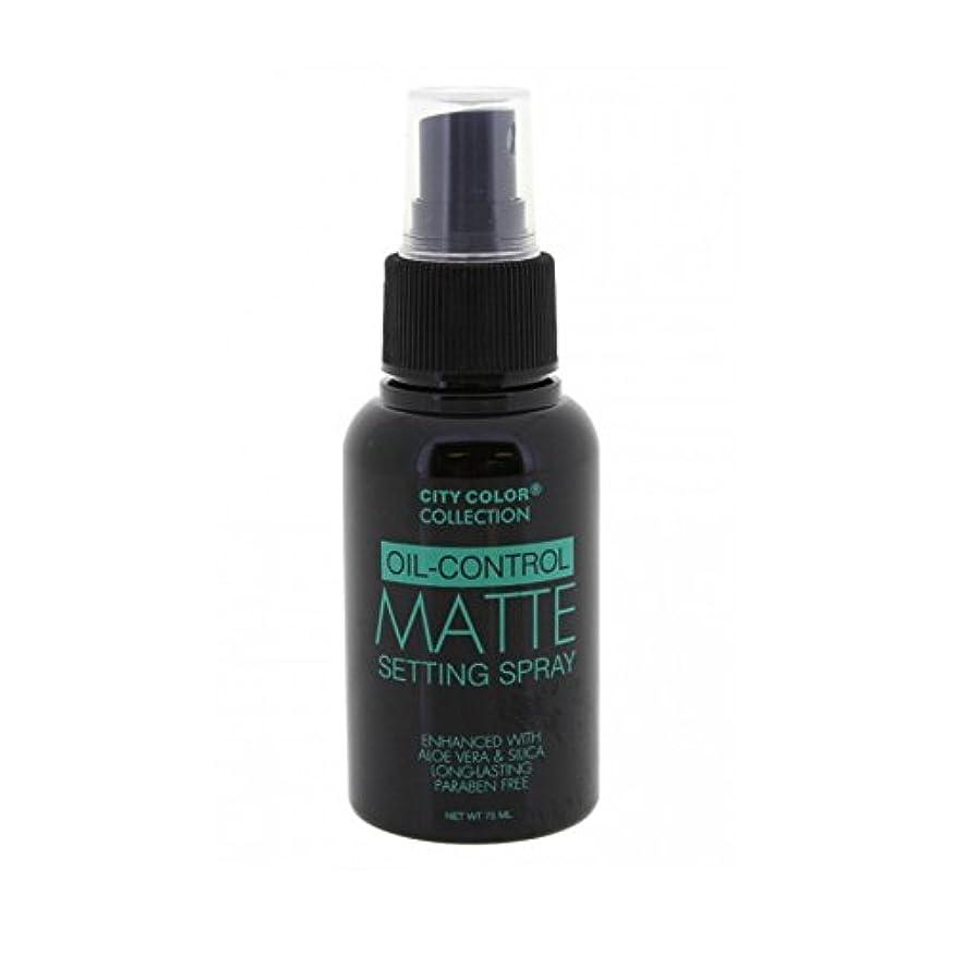 ペッカディロ上流のパズル(6 Pack) CITY COLOR Oil-Control Matte Setting Spray (並行輸入品)