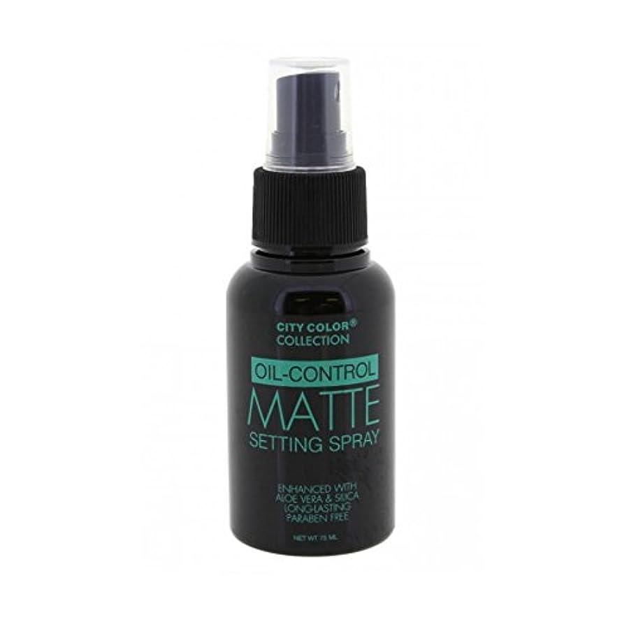 インスタント連鎖タンパク質(6 Pack) CITY COLOR Oil-Control Matte Setting Spray (並行輸入品)