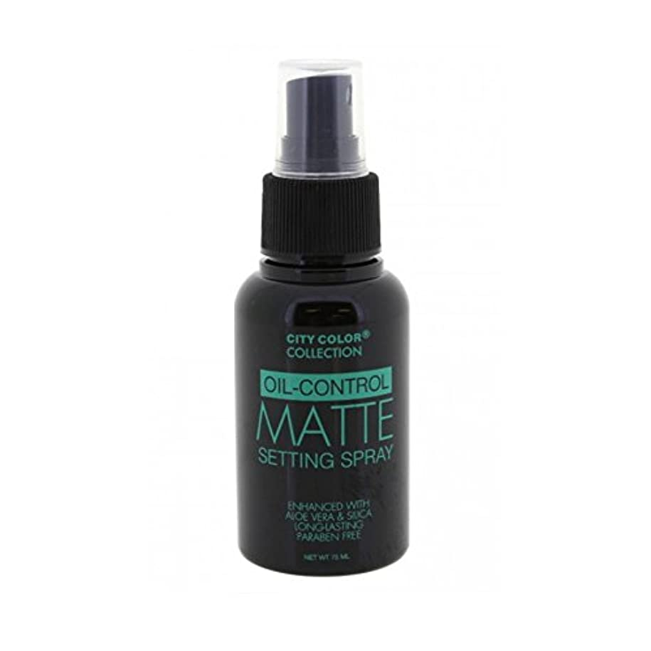 剛性つかの間移行する(6 Pack) CITY COLOR Oil-Control Matte Setting Spray (並行輸入品)