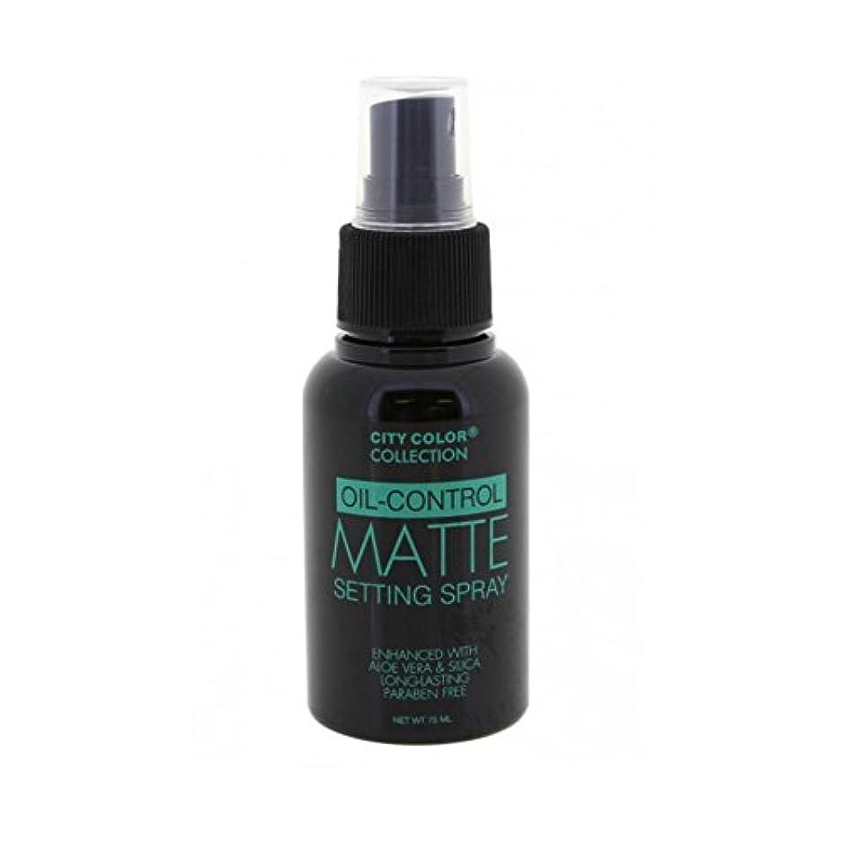 そんなに敬有利(6 Pack) CITY COLOR Oil-Control Matte Setting Spray (並行輸入品)