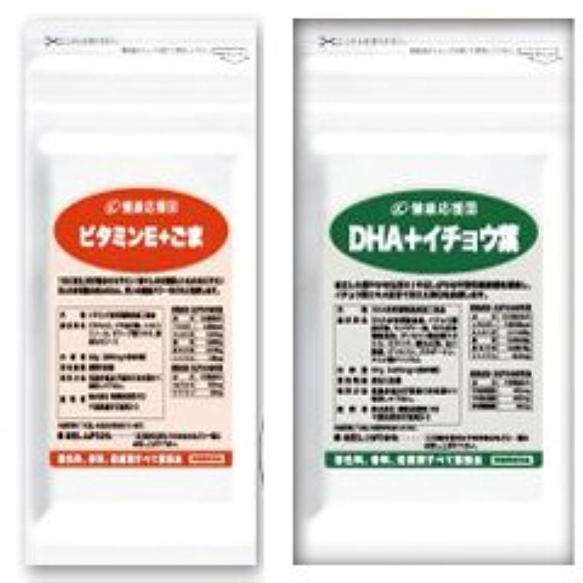 月面赤字確保する(お徳用12か月分) 毎日元気セット(ビタミンE+ごま)+(DHA+イチョウ葉エキス) 12袋&12袋セット(DHA?EPA?ビタミンE?セサミン)