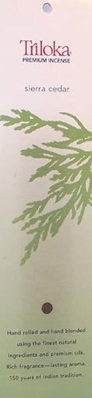暴露する慈悲深いヘッドレスSierra Cedar – TrilokaプレミアムIncense Sticks