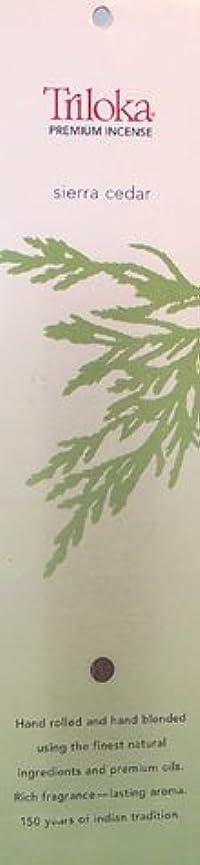 誘導特別な手首Sierra Cedar – TrilokaプレミアムIncense Sticks
