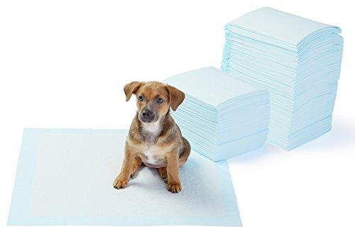 Amazonベーシック 犬用トイレトレーニングパッド 標準サイズ 150枚セット