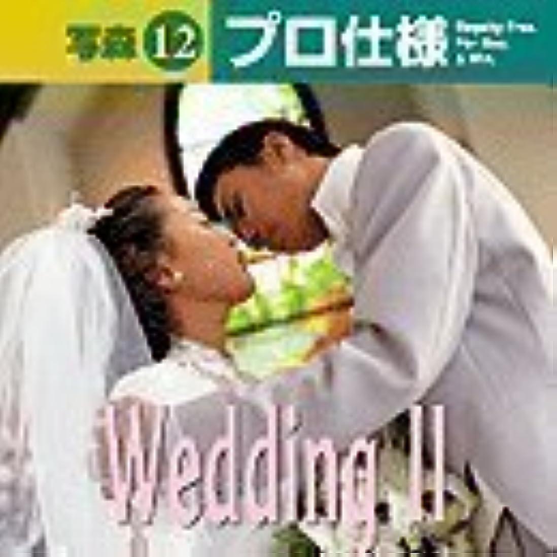虐殺喪交通渋滞写森プロ仕様 Vol.12 Wedding 2