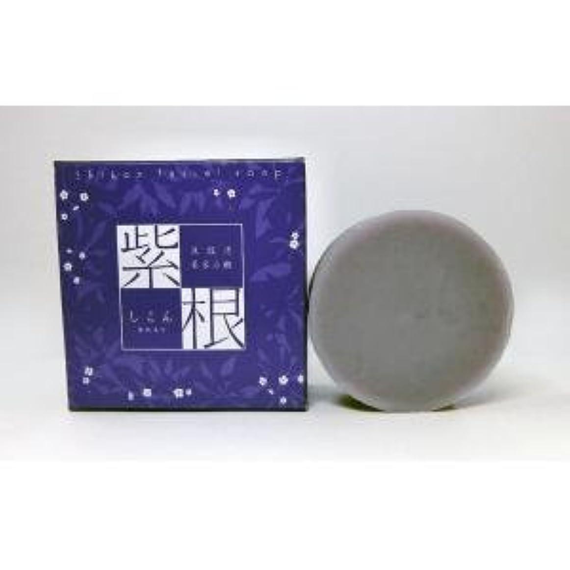 飲料上がる切り刻む紫根石鹸 100g×5個セット