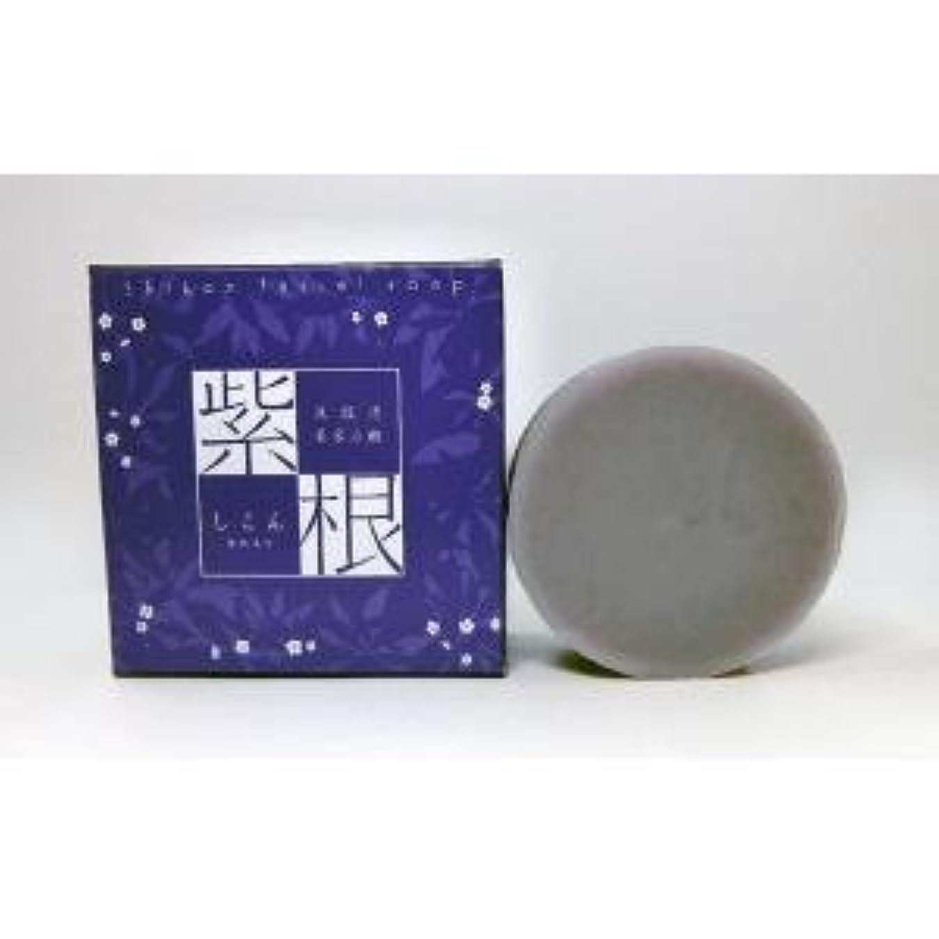 高揚した虚栄心温かい紫根石鹸 100g×5個セット