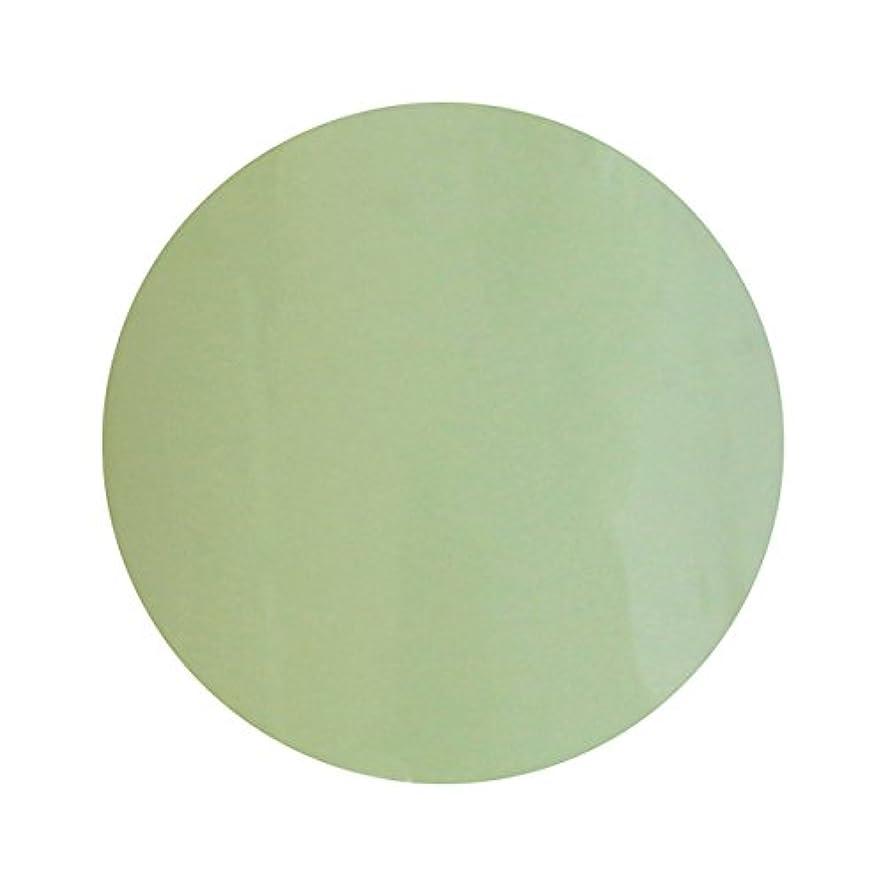 ジャズフックピーブT-GEL COLLECTION ティージェル カラージェル D213 ミルキーライム 4ml