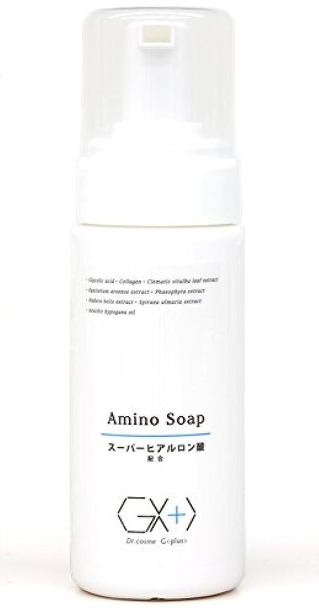重さアルプス認識G+アミノソープ (プッシュ式泡タイプ洗顔料)