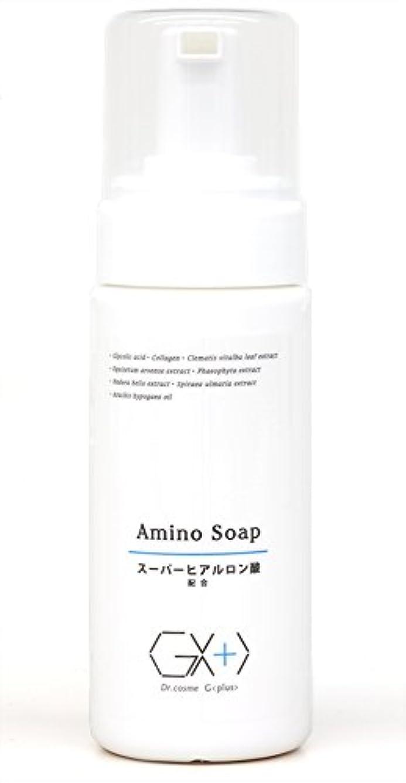 酸化する肥沃なカタログG+アミノソープ (プッシュ式泡タイプ洗顔料)