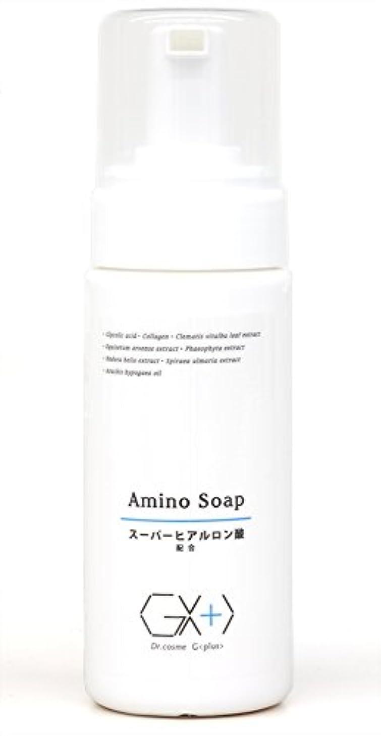 毛皮コンプライアンスゲストG+アミノソープ (プッシュ式泡タイプ洗顔料)