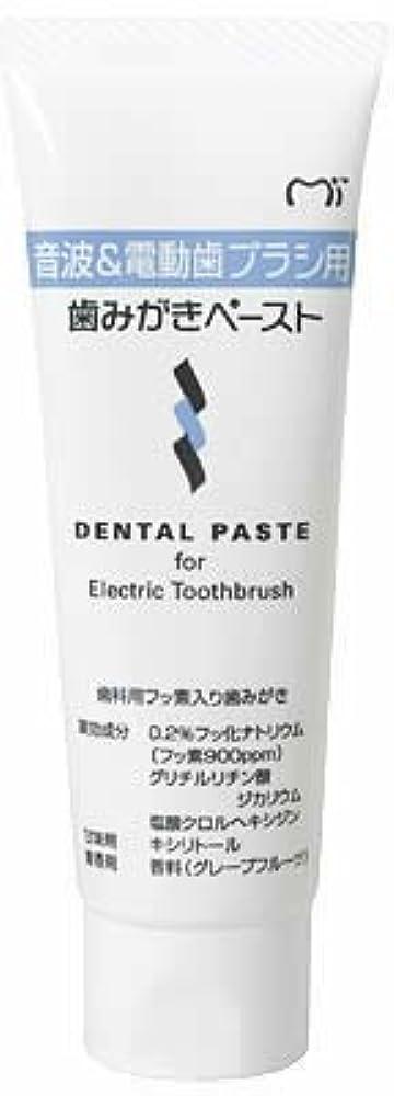 起こりやすい排気世辞音波&電動歯ブラシ用 歯磨きペースト