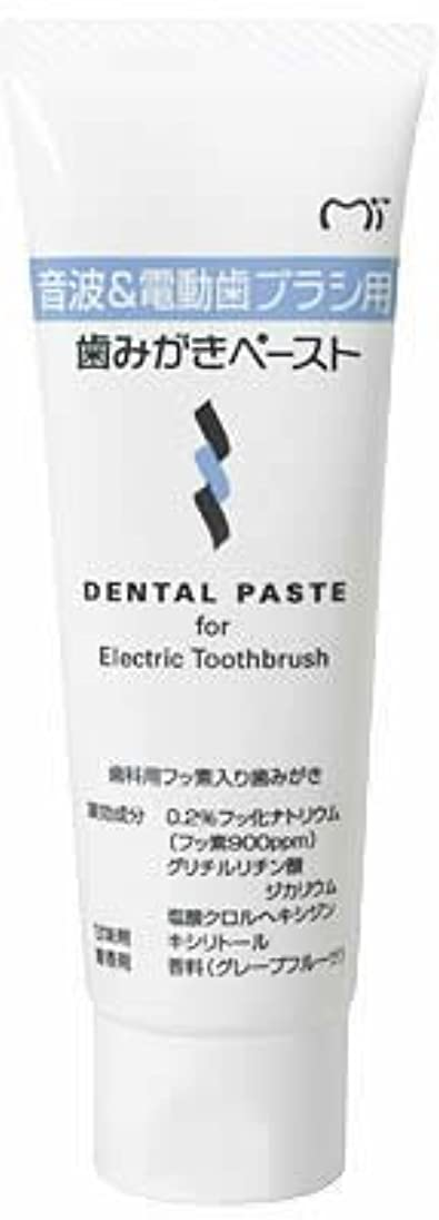 モルヒネ拍手するミリメーター音波&電動歯ブラシ用 歯磨きペースト