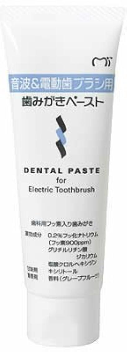 性格症候群中に音波&電動歯ブラシ用 歯磨きペースト