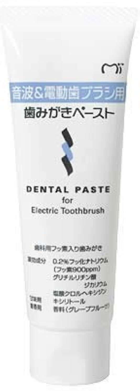 深く静脈誤解音波&電動歯ブラシ用 歯磨きペースト