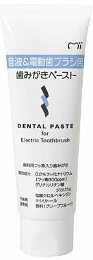 移動ベーシック近傍音波&電動歯ブラシ用 歯磨きペースト