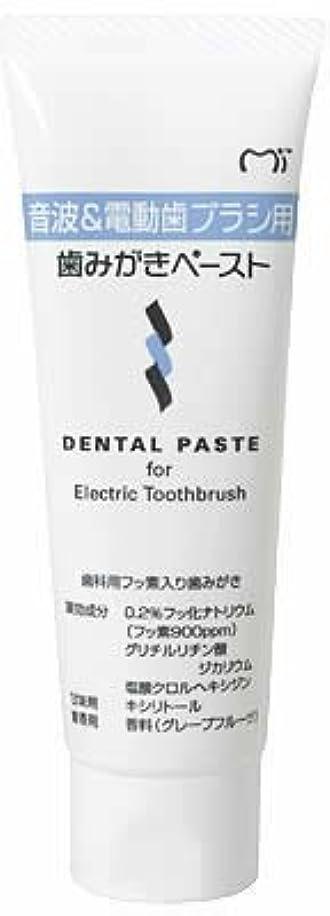 感嘆わかりやすい起こりやすい音波&電動歯ブラシ用 歯磨きペースト