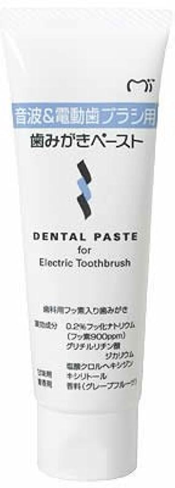 マークされた薬告発音波&電動歯ブラシ用 歯磨きペースト