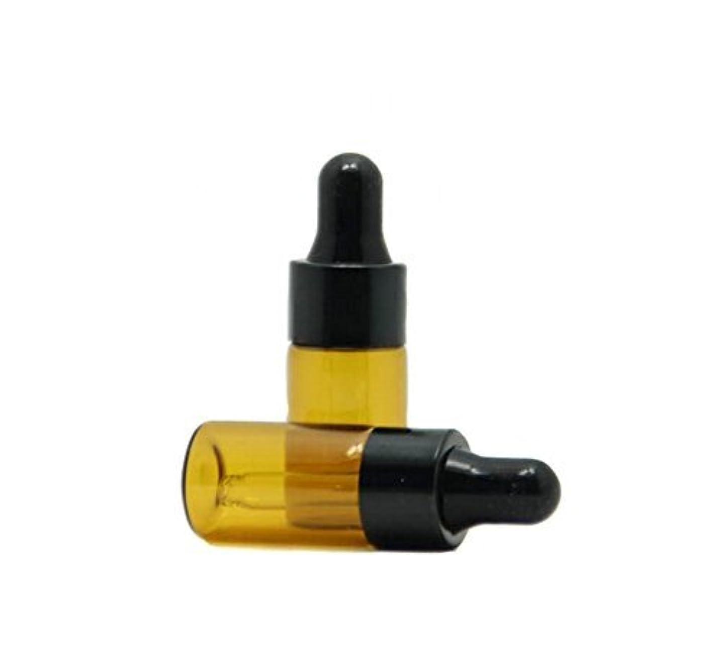 パイプラインぼかし曲げる3ml 15 Pcs Refillable Mini Amber Glass Essential Oil Bottles Dropper Bottles Vials With Eyed Dropper For Aromatherapy Eye Dropper Cosmetics (black cap) [並行輸入品]