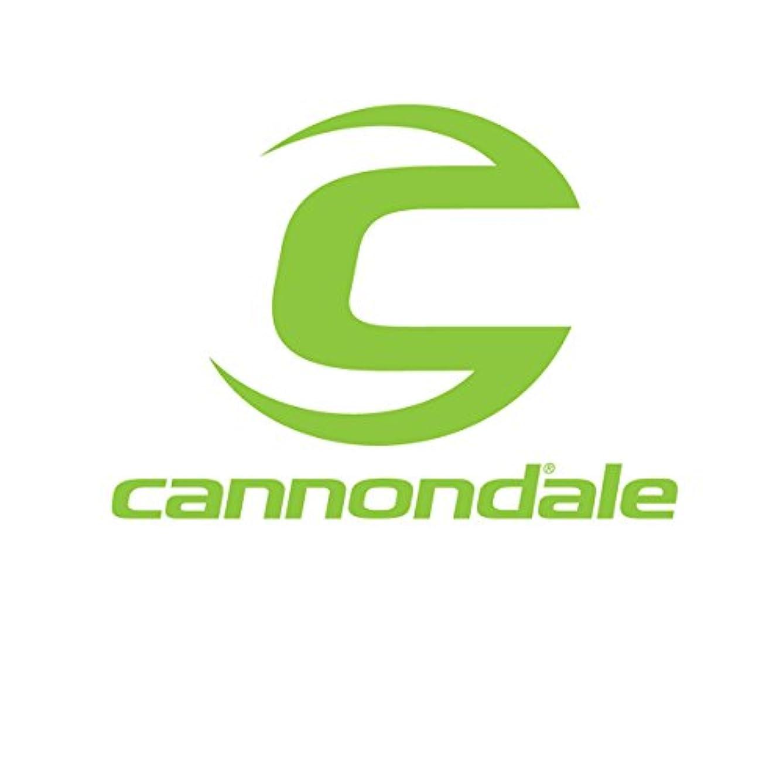 解き明かす非常に襟Cannondale 2017 Diagonal 20oz水ボトル