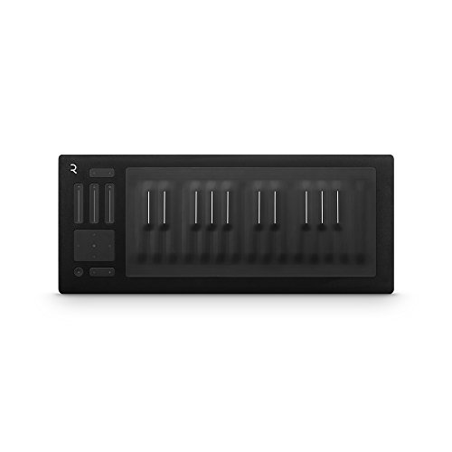 ROLI Seaboard RISE 25 MIDI Controller ...
