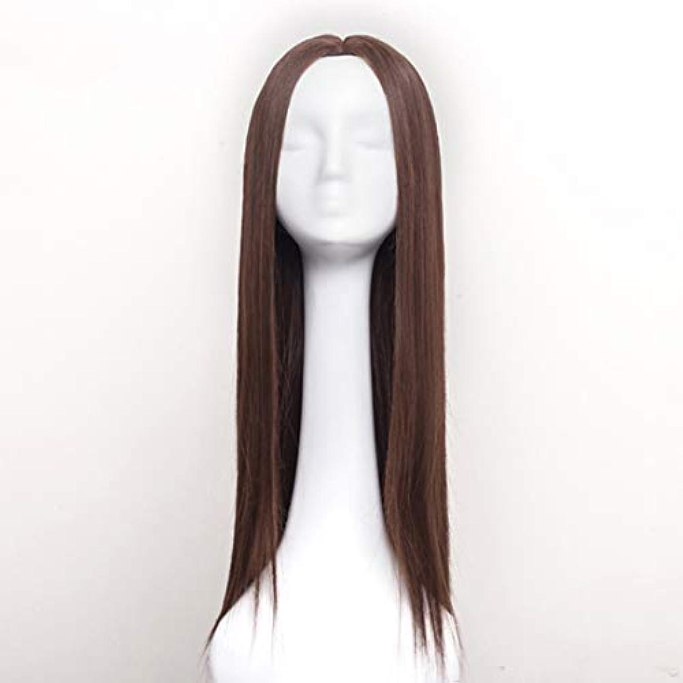 可動教えるスラムSummerys 女性のための合成かつら自然に見えるロングストレート波状なしレース耐熱交換かつら (Color : Light Brown)