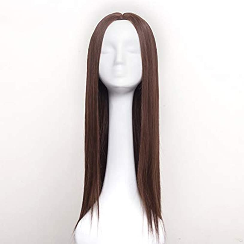 習慣潜在的な飾り羽Summerys 女性のための合成かつら自然に見えるロングストレート波状なしレース耐熱交換かつら (Color : Light Brown)