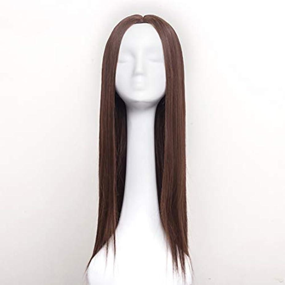 トレースリードリスナーSummerys 女性のための合成かつら自然に見えるロングストレート波状なしレース耐熱交換かつら (Color : Light Brown)