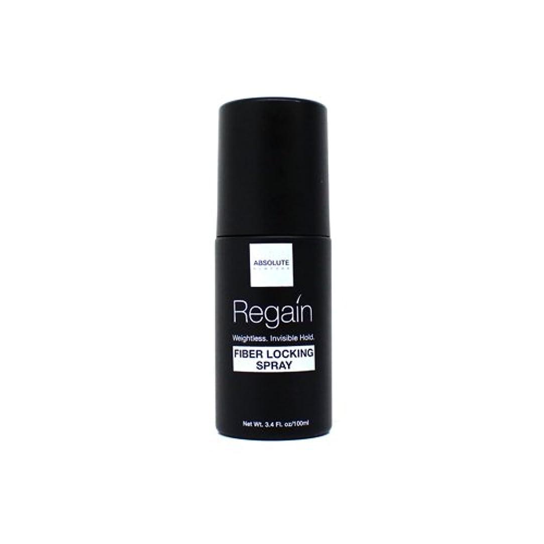 明るくする排除凍結Absolute Hair Fiber Locking Hair Spray (並行輸入品)